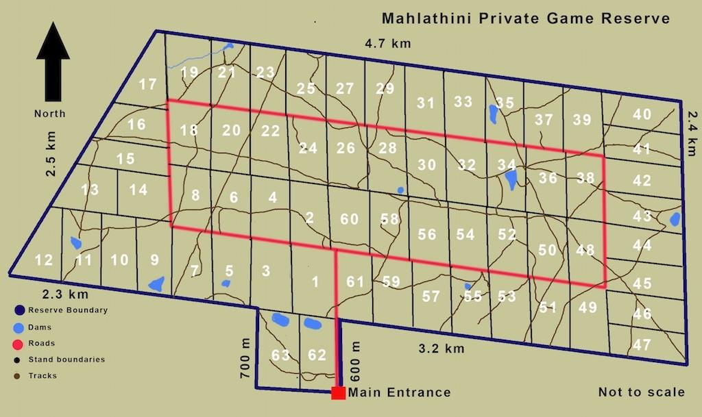 map of Mahlathini